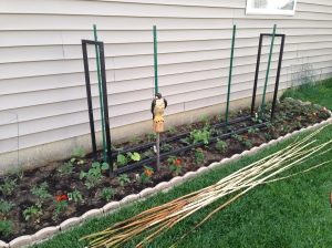 After letting your ground settle, planting your vegetable seedlings is next